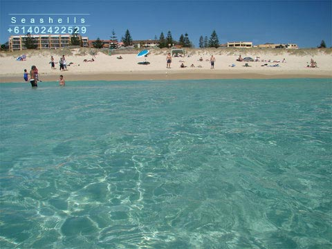 Photo of Scarborough Beach, near Seashells apartments